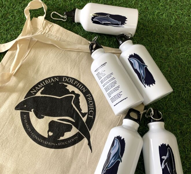 Nam Dolphin Project Gifts